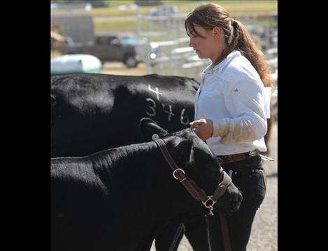 Kelsey Blevins holds a black Angus cow and calf as she waits for her class to be called.