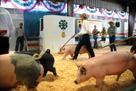 Judge Jay Bodner watches contestants in swine showmanship as they try to make their pigs look as good as possible. Bodner has his eye on Cade Howlett.