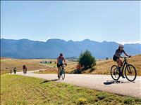 Pedal to Plate bike ride shines light on locally produced food