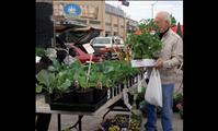 Farmers Market thriving in Polson