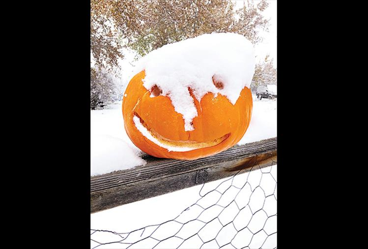 That's snow business!  Monday's fall storm frosted the valley with a layer of snow atop autumn leaves and jack-o-lanterns in Ronan.