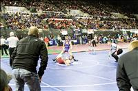 Allik wins wrestling state title