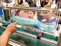 Scientific curiosity encouraged during family night