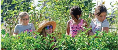 Sarah Klaus, wearing a hat, shows children the different vegetables in the garden.