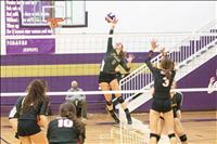 Mission Valley volleyballers capture postseason honors