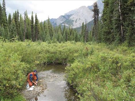 UM Bio Station announces new program to assist watershed groups with water quality monitoring in Montana.