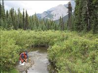 New program assists watershed groups in Montana
