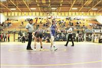 Mission Valley grapplers qualify for state tournament action