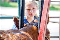 Lake County Fair exhibits valley talent