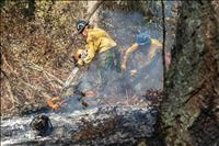 Evacuation orders lifted, fire containment grows
