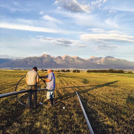 Robin and Steve Connell adjust a wheel move on their ranch south of Charlo. Irrigation water, delivered by the Flathead Indian Irrigation Project, is the lifeblood of Mission Valley farmers and ranchers.