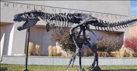 Museum of the Rockies offers free admission