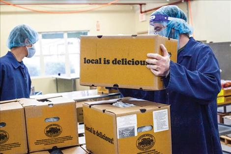 A Mission Mountain Food Enterprise Center employee boxes food for the Local Food for Local Families  food box project.