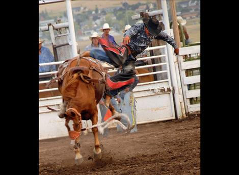A tough pen of broncs makes winning a check at the Flathead River Rodeo a workout. A cowboy exits stage left